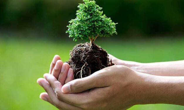 My essays Grade 10-save the environment-(පරිසරය සුරකිමු රචනාව)  -by Lisara Fernando